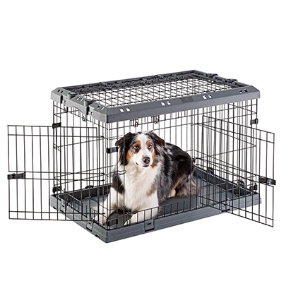 Carrying case for dogs